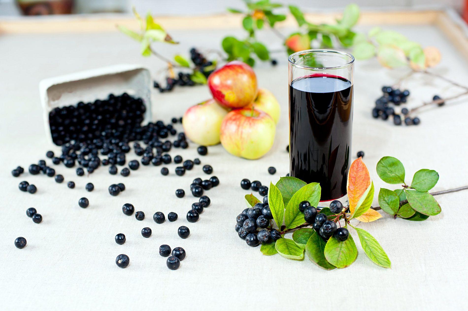 Ce este aronia ? Despre arbustul cu fructe-minune