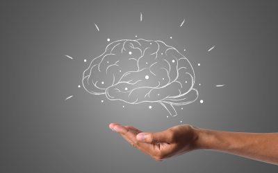 Cum poți îmbunătăți memoria si concentrarea în mod natural?